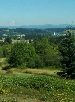 Chehalis, Lewis County, Washington